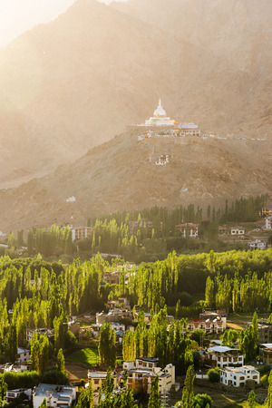 Shanti stupa, Leh city and trees in the sunset light, Leh, Ladakh, Jammu and Kashmir, India - Vertical Landscape Imagens - 84201527