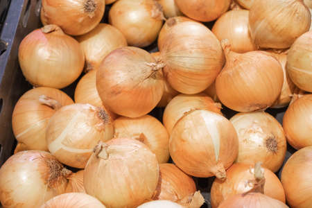 Many onions were sold on the shelves of local products in department stores. It is a non-toxic product. And still looking fresh