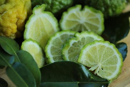 xwhite: Bergamot herb in Thailand  close up