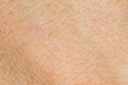 Background of the human skin. macro