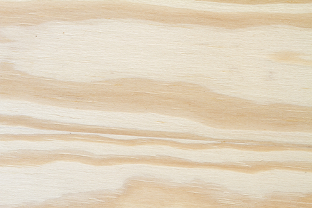 wood texture background: wood plywood texture background