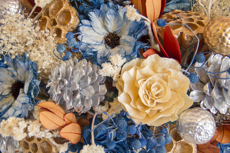 humulus lupulus: dry flower Stock Photo