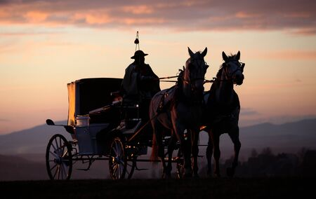 cartwheel: the carriage horsed at the sunset