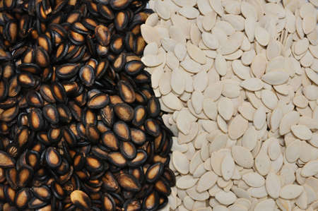 watermelon seed & pumpkin seed photo