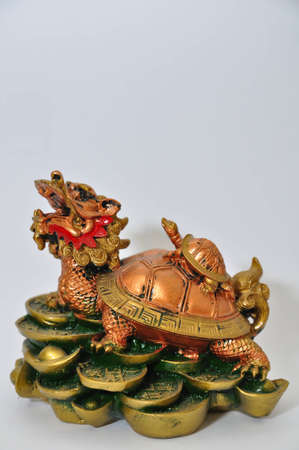 Dragon Turtle photo