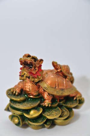 Dragon Turtle photo
