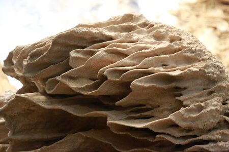 stalagmite: Stalagmite