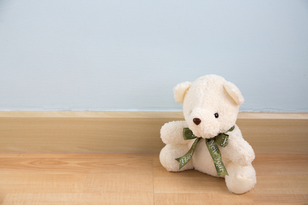 wooden partition: bear doll on wood floor and light blue wall