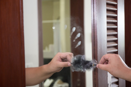 latent: latent fingerprint searching by forensic hand in crime scene investigation