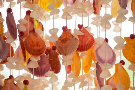 seashell mobile for window decorate Stock Photo