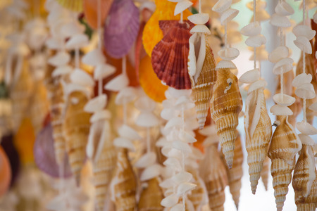 group of seashell mobile for house decorate Stock Photo