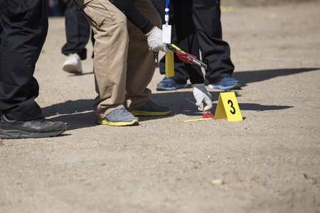 searh: forensic or law enforcement  team searh and evidence marker in crime scene training