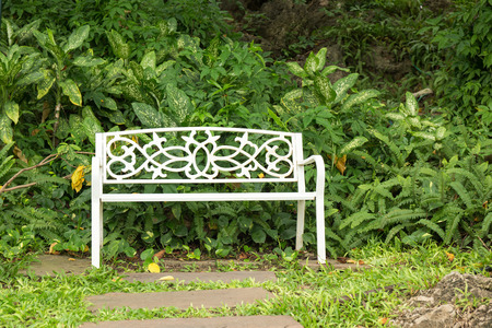 single white bench at park with green plant and tree in public park with copy space