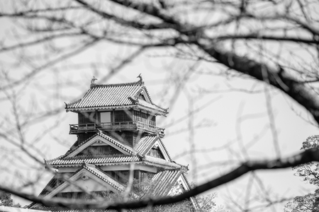 kumamoto castle in kyushu Japan, look through the dry cherry blossom branch in winter in black and white tone Imagens - 106399761