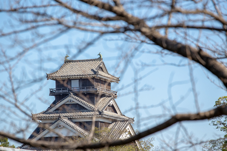 kumamoto castle in kyushu Japan, look through the dry cherry blossom branch in winter Imagens - 106399762