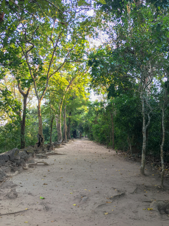 Walk way and green tree on the Angkor Thom wall near victory gate at Siem Reap, Cambodia