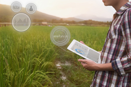 Agriculture farmer man hold tablet for analysis a report on rice agriculture Field with icon popup,agriculture technology concept. Stock Photo