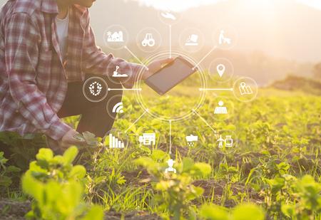Hombre de granjero de tecnología agrícola usando datos de análisis de computadora tableta e icono visual.