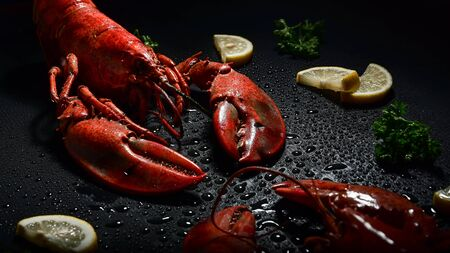 Red lobster with lemon and parsley studio shot high contrast dark mood. Stok Fotoğraf