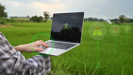 Agriculture technology attractive farmer navigating farmland with laptop computer  innovations for increasing productivity in agriculture.