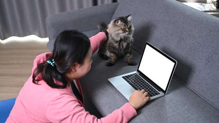 Side view of obese young woman using laptop computer and sitting with her lovely cat in living room. Stock Photo