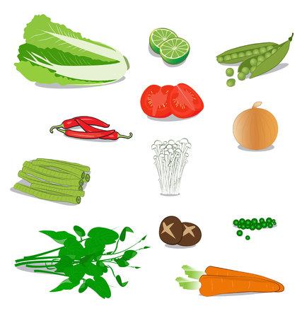 morning glory: many vegetable on white background