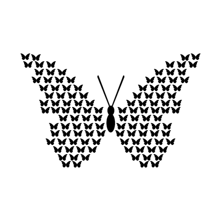 black butterfly: black butterfly Illustration