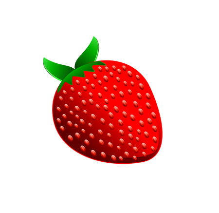 Strawberry Vector Illustration. Vector