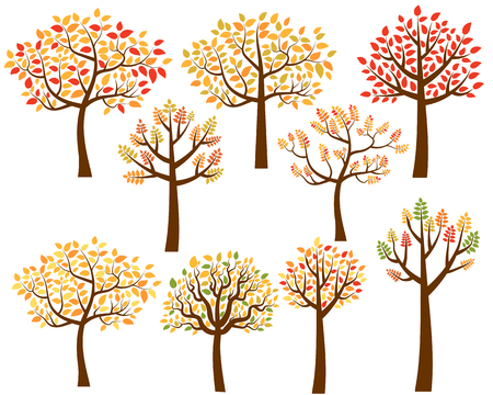 yellow red: Stylized fall trees with yellow, red and orange leaves. Illustration