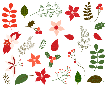 Vector set of Christmas foliage in green and red colors - leaves, winter flowers, floral elements, poinsettia in flat style for greeting cards and invitations Illustration