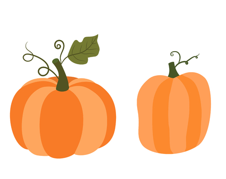 Orange autumn pumpkins with green stems, vector graphics for Thanksgiving and Halloween designs
