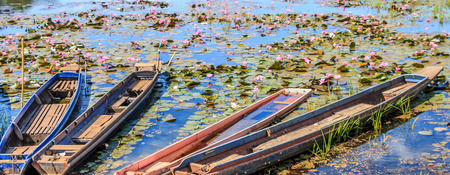 canoe at lagoons countryside, nature Thailand