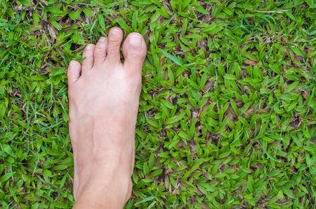 bare feet on green grass photo