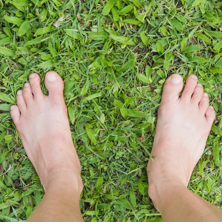 Bare female feet on the green grass