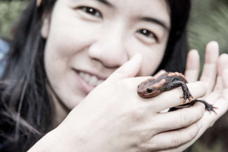 salamandre: female veterinary holding salamander in hand