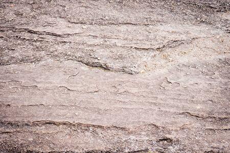 Camino de piedra caliza gris con musgo en la naturaleza como la textura de fondo Foto de archivo