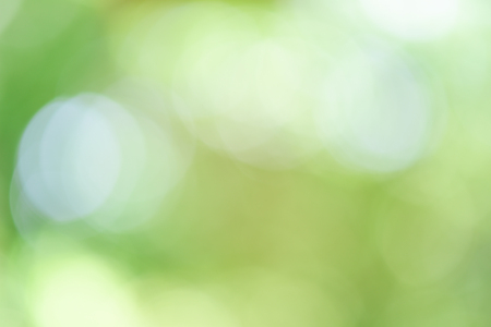 nature background: natural green background