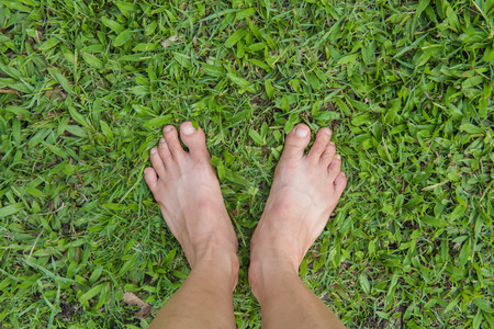 owning: Bare female feet on the green grass
