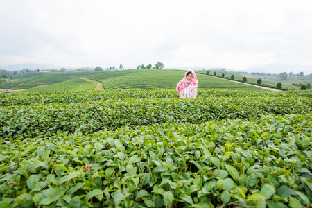 tribe woman picking tea in highland