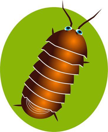 pillbug Stock Photo