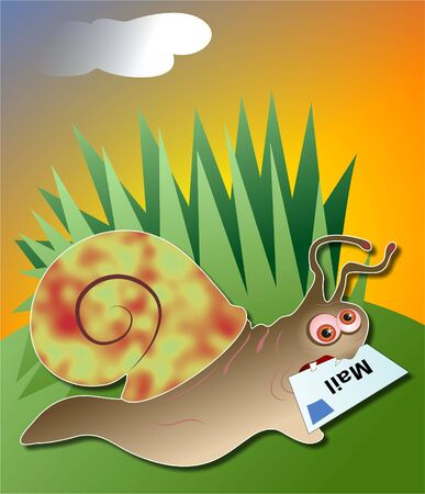mollusc: snail mail