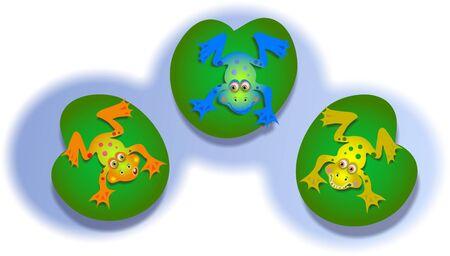 trio: froggies
