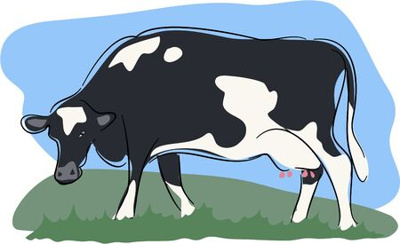 grazing: grazing cow Stock Photo