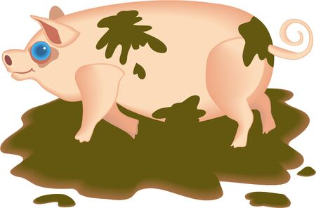 muck: muddy pig