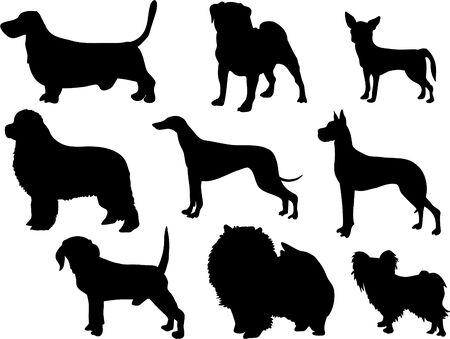 dog breed silhouettes photo