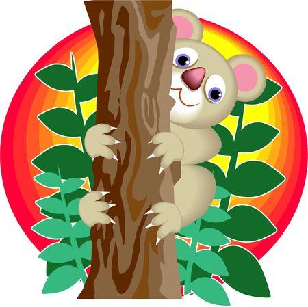 koala bear climbing a tree photo