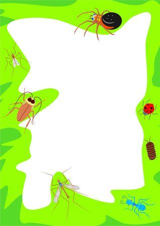 bugs border photo