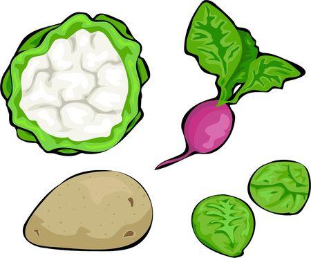 edibles: vegetable collection