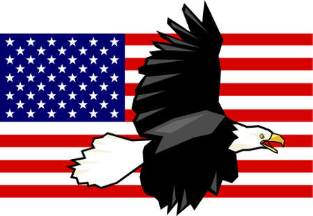 bald eagle flag usa photo