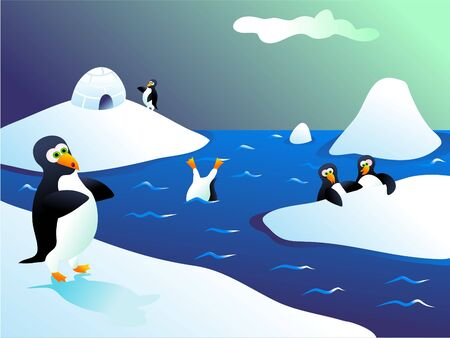 penguins in iceland Stock Photo - 261498
